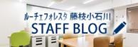 banner_blog_luce